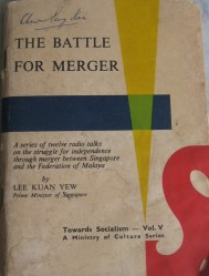 Battle for merger english cover
